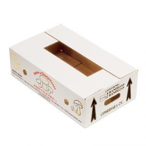 Caja Cartón Troquelada 447X270X128