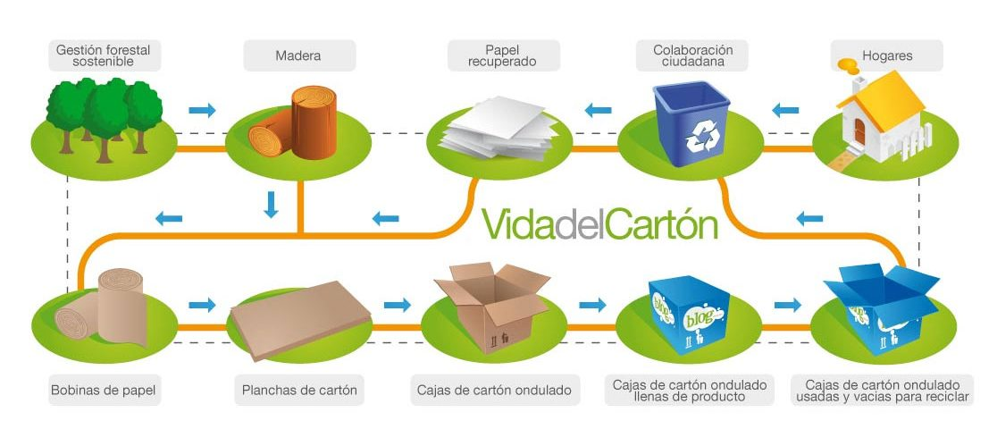 Ciclo Medio ambiente