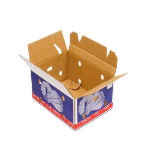 Caja Cartón Ajos Abierta