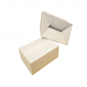 Caja inviolable_fondo automático_fondo blanco