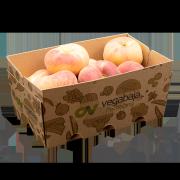 Barqueta para productos a granel hasta 1,5kgs, Vegabaja Packaging