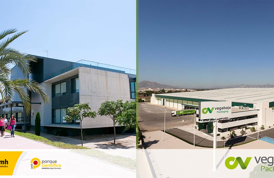 Vegabaja Packaging firma un acuerdo de colaboración con la Fundación UMH